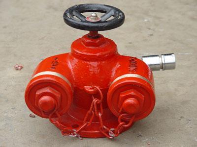 供应sqd型多用式消防水泵接合器图片
