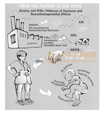 图10二噁英和多氯代联苯的迁移示意图