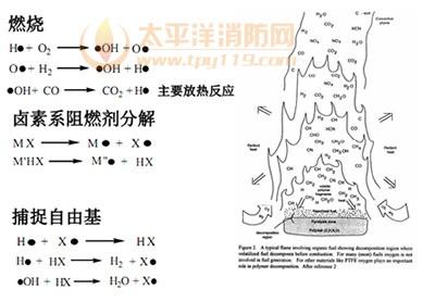 图8 卤系阻燃剂在气相捕捉自由基实现阻燃反应示意图